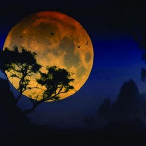 Full Moon, UK