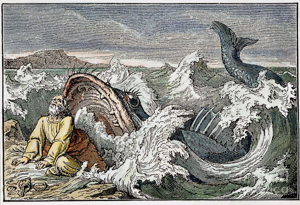 Jonah and the Whale is an ancient SUN myth - Astrotheology net